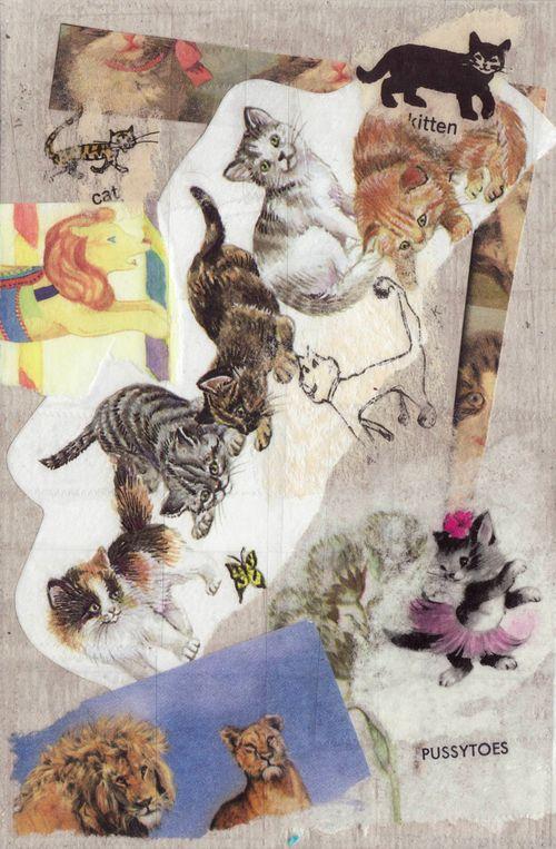 Emily-catpostcard-small